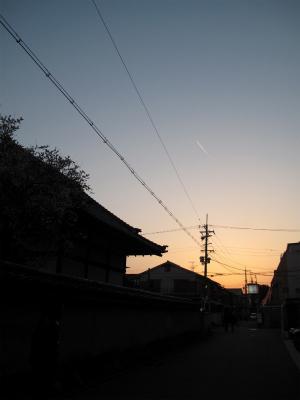 IMG_8242.jpg